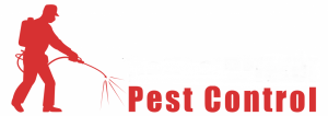 bath-and-bristol-pest-control 1